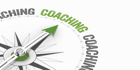 Systemisches Businesscoaching